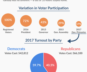 Voter Turnout in 2017 Gubernatorial Primaries
