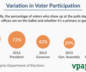 Variation in Voter Participation by Election